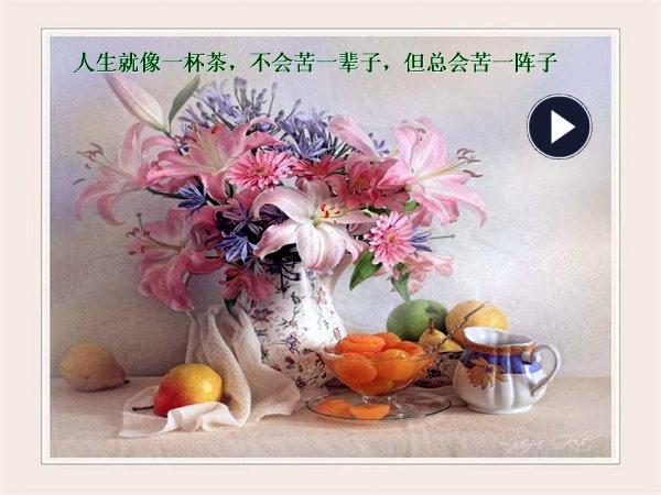 芙蓉网首页 > 杂锦集聚 > 图片共赏 > 图文共赏(组图) >